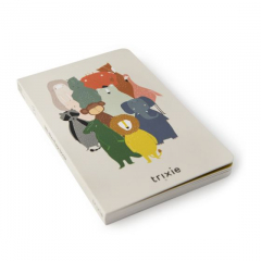 Lift-the-flap book