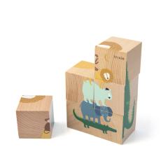 Wooden Puzzle Blocks