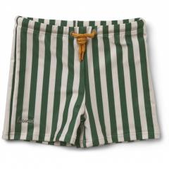 Otto Swim Pants / Garden Green / Sandy