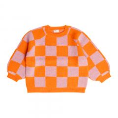 Sweater / Blocked Baboon