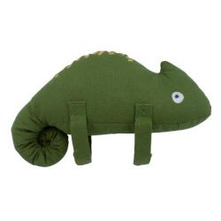 Musical pull toy Carley the chameleon