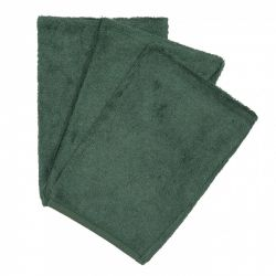 Set van 3 washandjes / Aspen Green