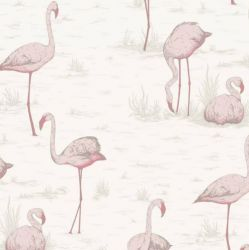 Behangpapier / Flamingos