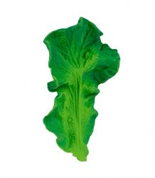 Bijtspeeltje / Kendall The Kale